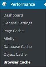 Browser Cache W3 Total Cache ‹ KLEO — WordPress - Google Chrome_2