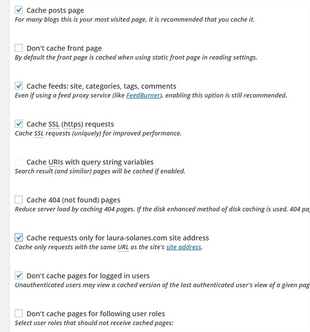 Page Cache W3 Total Cache ‹ KLEO — WordPress - Google Chrome_2