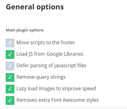 Speed Booster Options ‹ KLEO — WordPress - Google Chrome_3