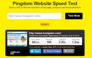 Website speed test - Google Chrome_12