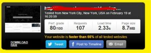 Website speed test - Google Chrome_16