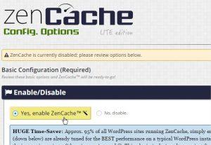 ZenCache ‹ KLEO — WordPress - Google Chrome_3